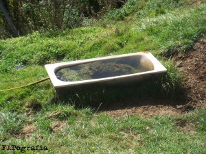 Una bañera en la pradera